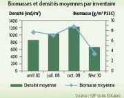 Biomasses et densités moyennes par inventaire