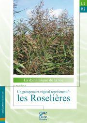 L2.B2 - Un groupement végétal représentatif : les roselières (2017)