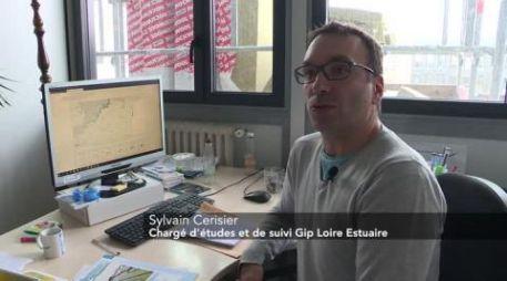 Retrouvez le GIP Loire Estuaire sur Télénantes :