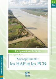 Nouvelle fiche de synthèse : L2A6c - Micropolluants : les HAP et les PCB
