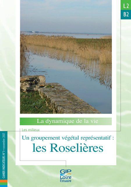 L2.B2 - Un groupement végétal représentatif : les roselières (2007)