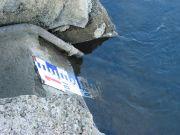 Echelle de lecture de la hauteur d'eau en étiage à Montjean-sur-Loire