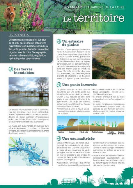 Les marais estuariens de la Loire - Le territoire