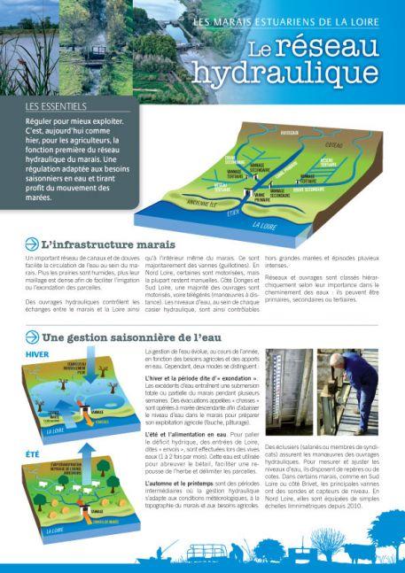 Les marais estuariens de la Loire - Le réseau hydraulique