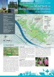 Les marais estuariens de la Loire - Les Marais de Saint-Etienne-de-Montluc et de Couëron