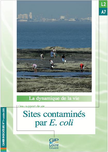 L2.A7 - Sites contaminés par Escherichia coli (2005)