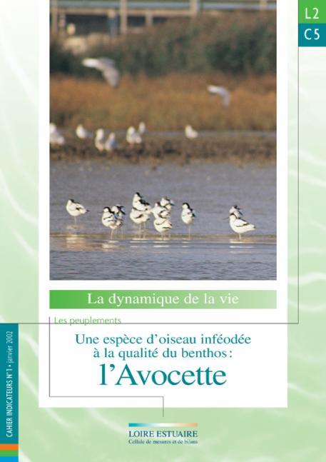 L2.C5 - Une espèces d'oiseau inféodée à la qualité du benthos : l'Avocette (2002)