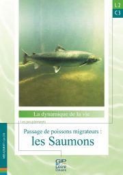 Nouvelle fiche de synthèse : L2C3 - Passage de poissons migrateurs : les Saumons